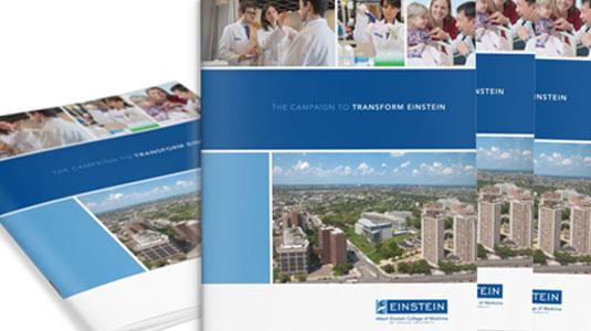print design, capital campaign, einstein college of medicine, james wawrzewski, graphic design, new york