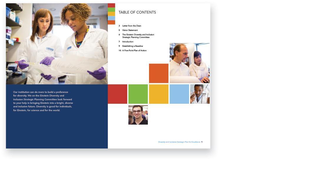 Einstein college of medicine, diversity, branding, ludlow6, james wawrzewski